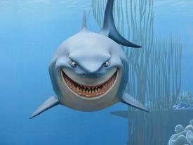 LBF requin