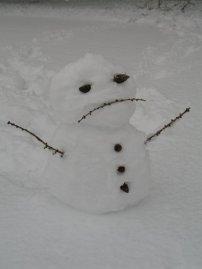 LBF snowman sad