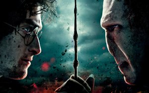 LBF Harry Potter 7
